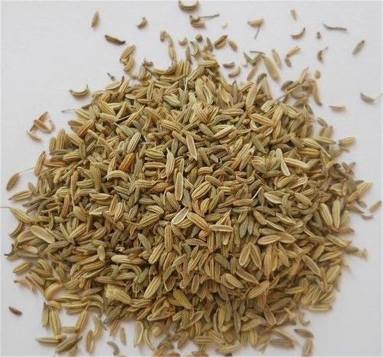 Hinojo Semillas, bandeja 100 gramos, 1 ud