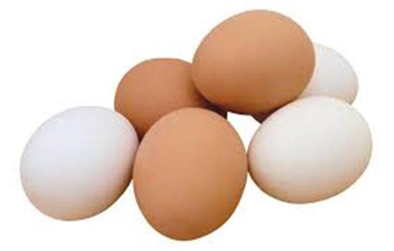 Huevos camperos Albaclara, 1 docena
