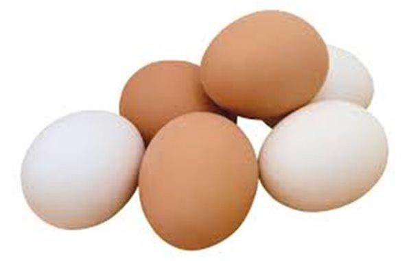 Huevos camperos Albaclara