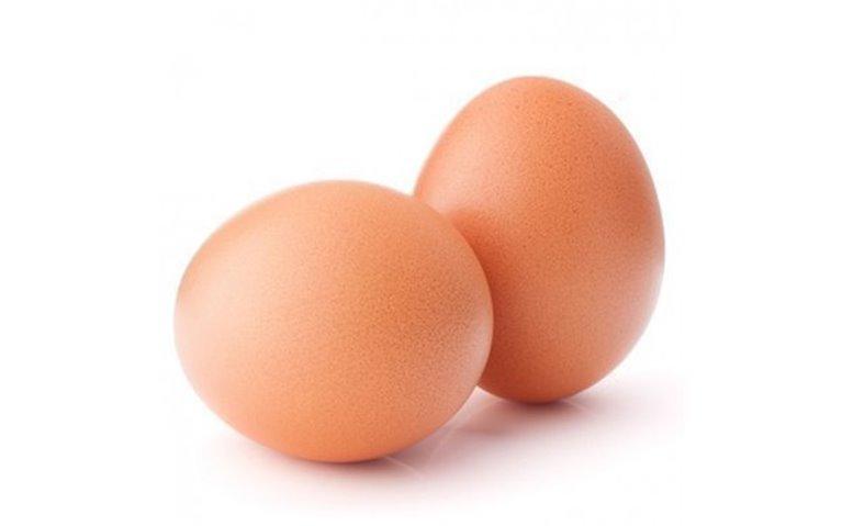 Huevos camperos, 1 lote