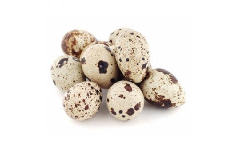 Huevos de codorniz, 1 lote