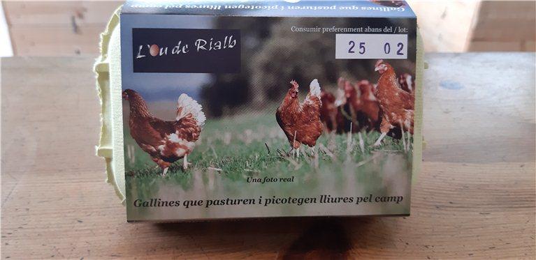 Huevos de gallinas criadas al aire libre, 400 gr