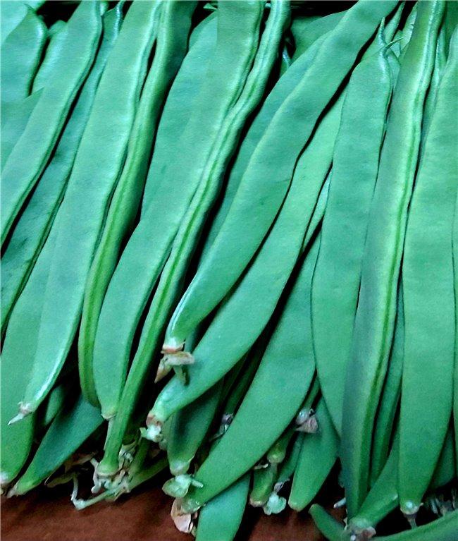 Judias Verdes ( 1000gr)