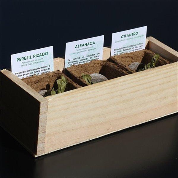 Kit de autocultivo de aromáticas