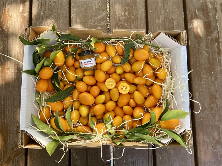 Kumquat Box