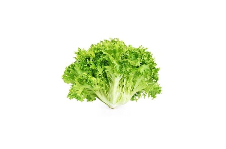 Batavia lettuce (ud)