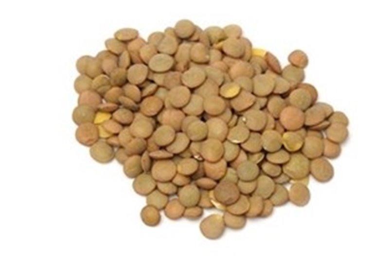 Castilian Lentils