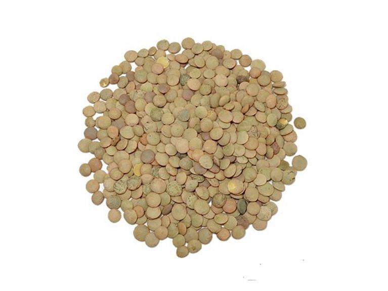 Lenteja castellana (500 gr)