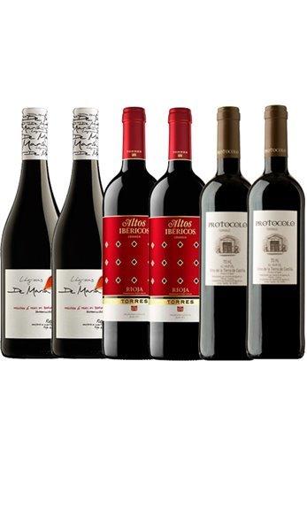 Lote de 6 Vinos Tintos: Protocolo, Ibericos Y Lagrimas de Maria Maduro