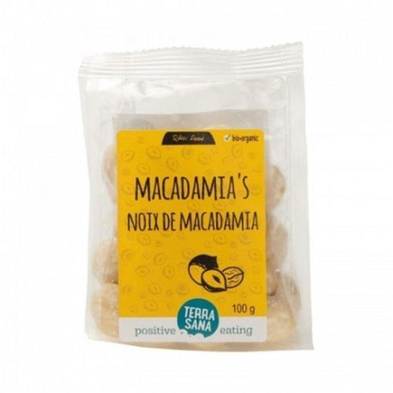 Macadamia, 1 ud