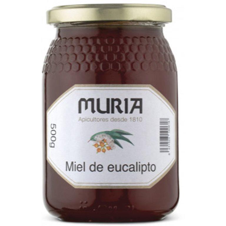 Miel de Eucalipto 1kg