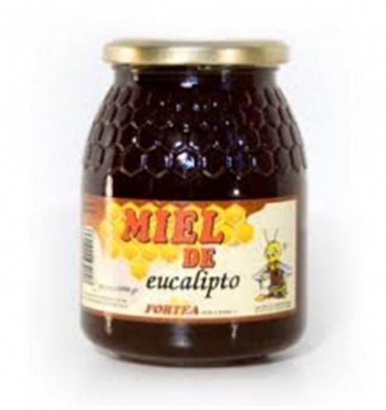 Miel de eucalipto Fortea