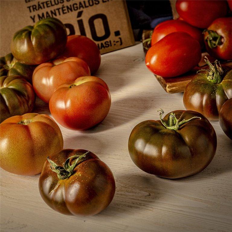 Mix Tomates de temporada - 4,5 kg.