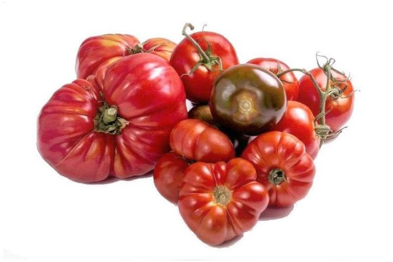 Mix Tomates de temporada (4,5 kg)