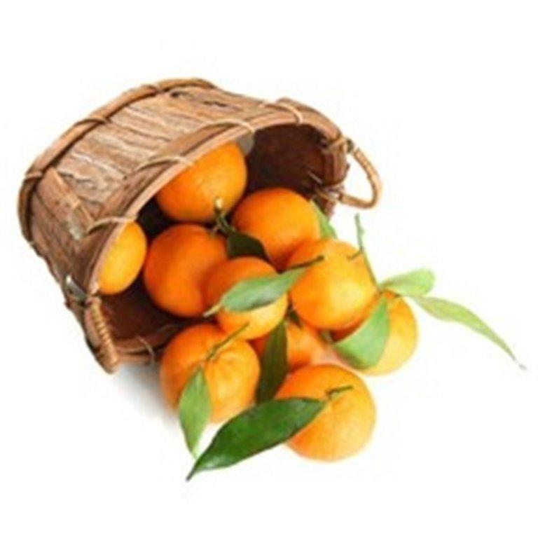 Naranja de Zumo ecológicas, 10 kg