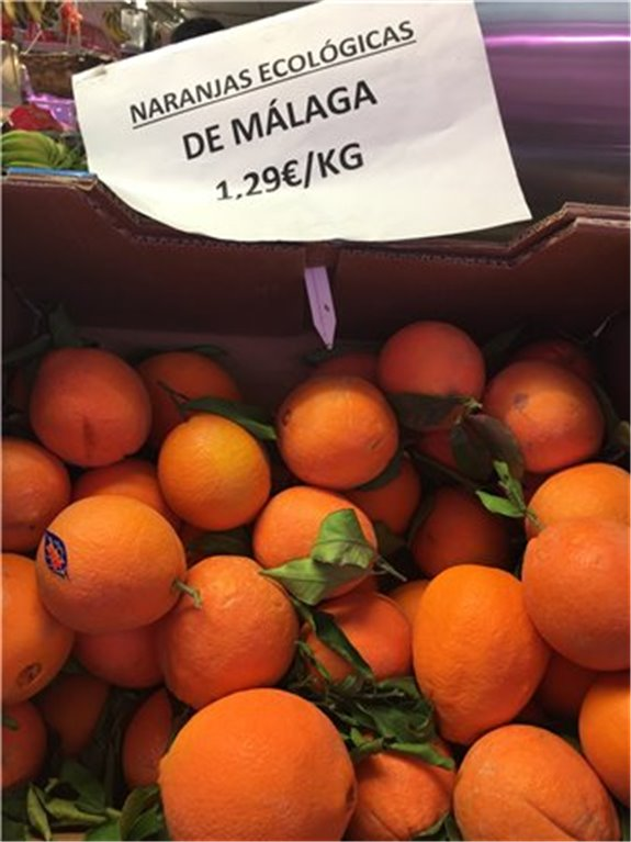 Naranjas ecológicas de Málaga