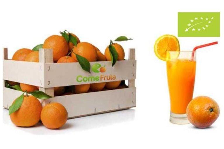 Naranjas ecológicas para zumo