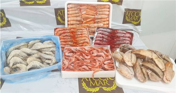 Pack Marisco 3 + Regalo (ref. 120244)