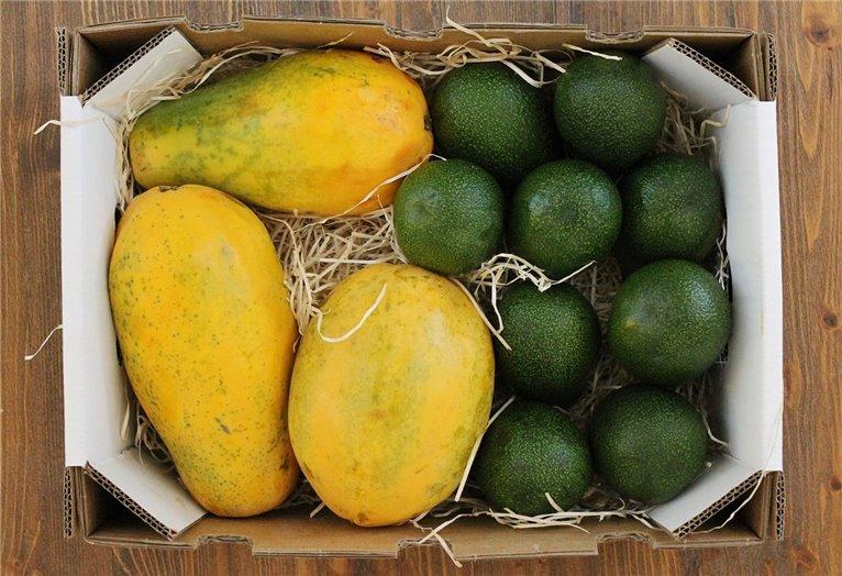 Papacuate Box