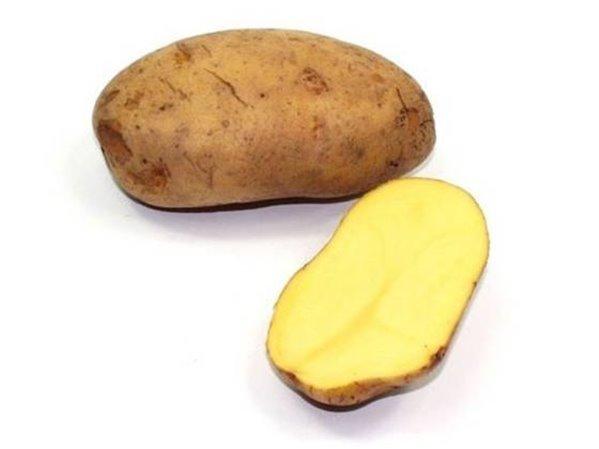 Patata Agría (1 kg) - Especial freír