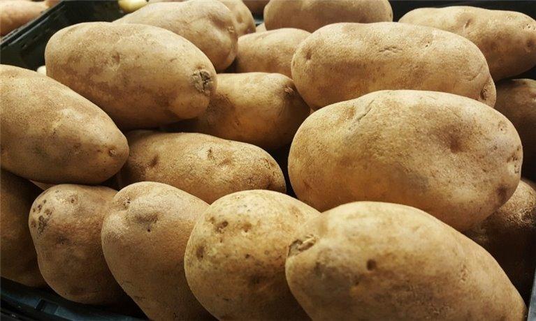 Potato from Galicia