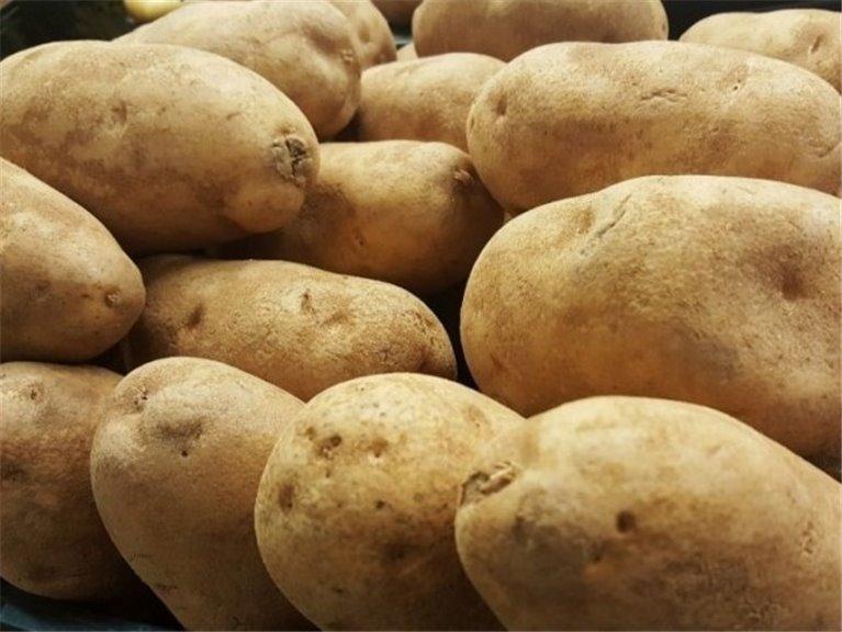 Patata de Galicia