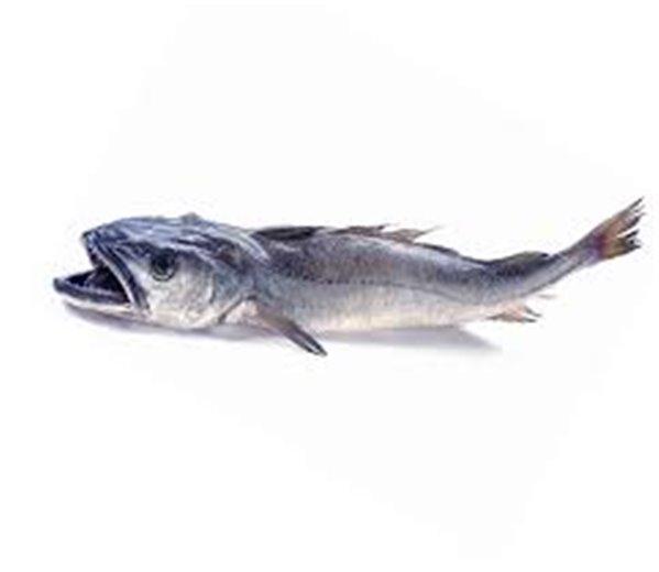 Pescadilla de Coruña