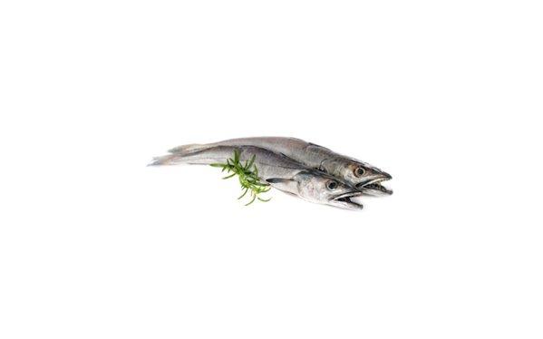 Pescadilla Volanta