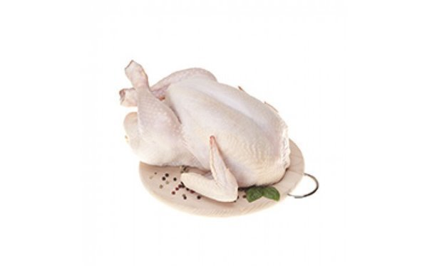 Pollo picantón