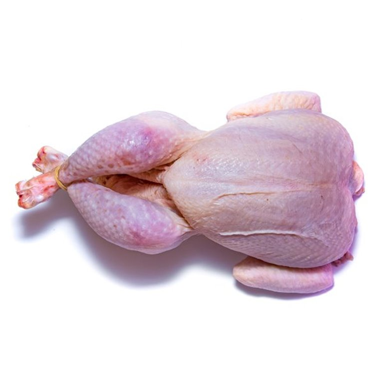 Pollos frescos