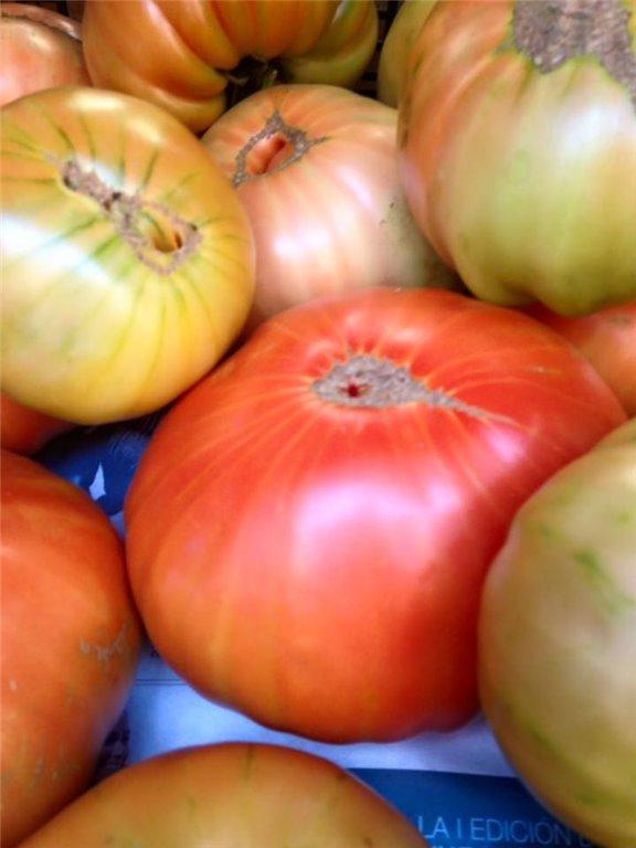 4 Kg de Tomate, 1 ud