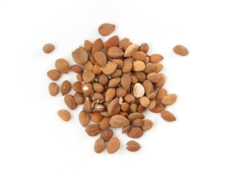 Semillas de albaricoque amargas a granel