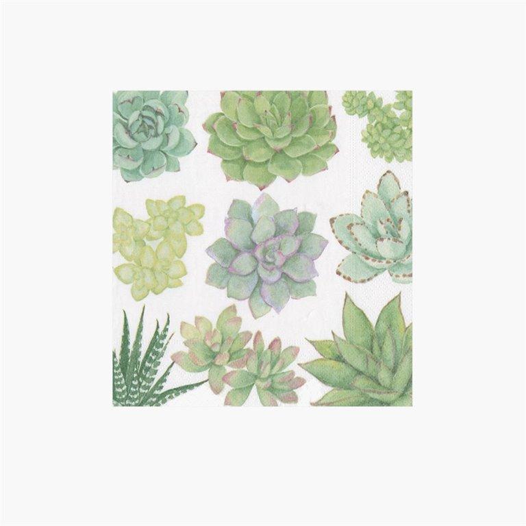 Servilletas Succulents, 20uds Caspari