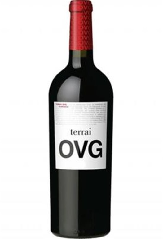 Terrai OVG roble 2017, 1 ud
