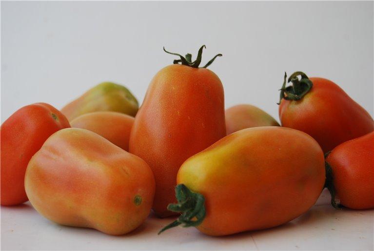 Pear Tomato -500 Gr