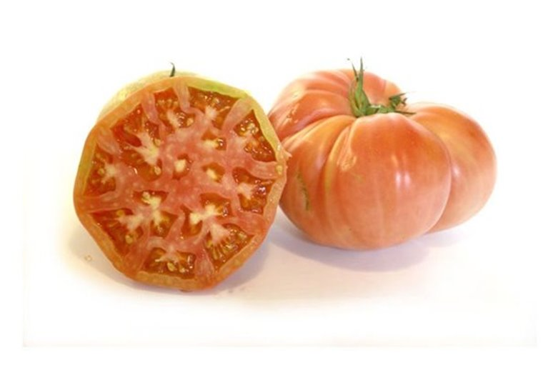 Tomates rosa