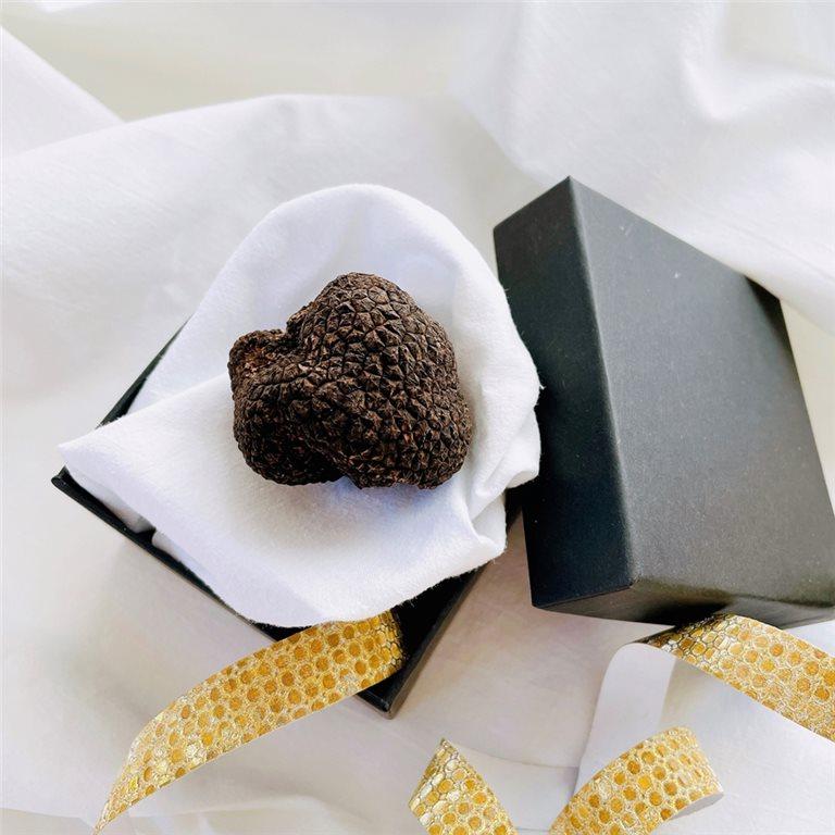 Trufa negra fresca de Teruel