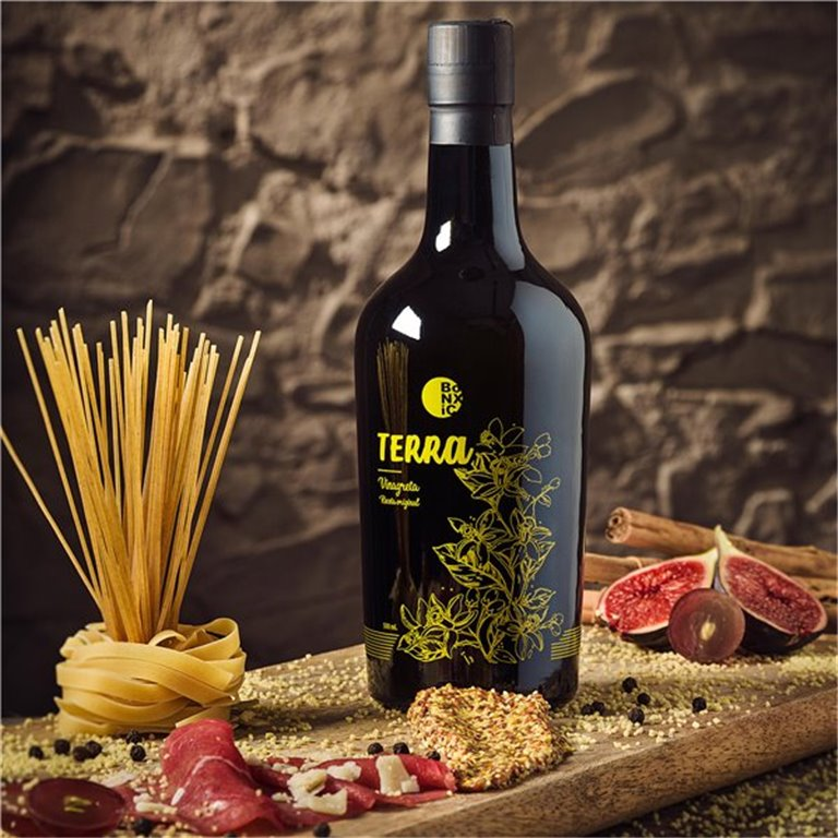 VINAGRETA TERRA PREMIUM 500ml glass bottle