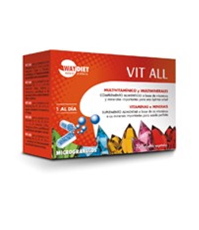 Vit all Multi Vitaminas y Minerales, 300 gr