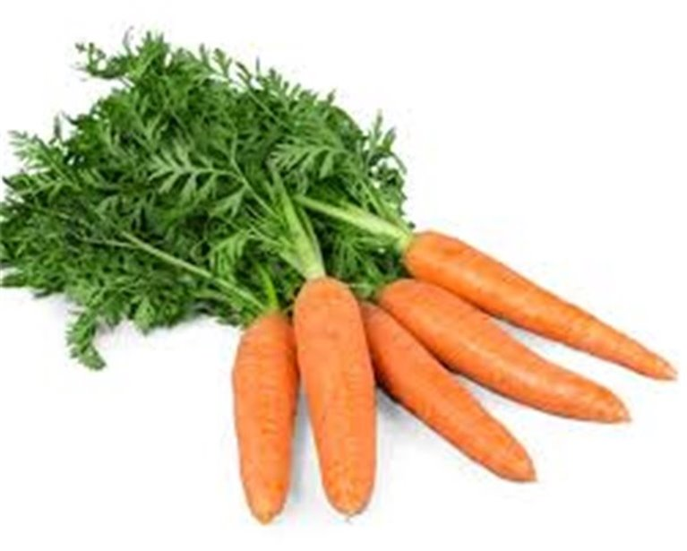 Zanahoria (manojo)