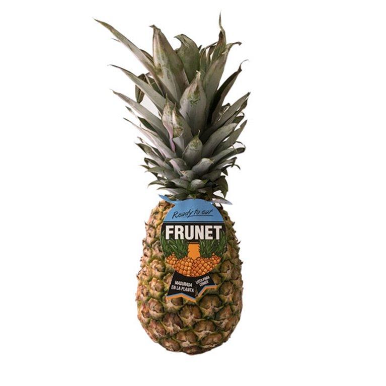 Piña frunet (1,5 - 2 kg aprox)