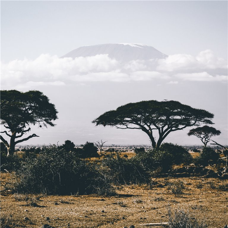 ir a Áfricana
