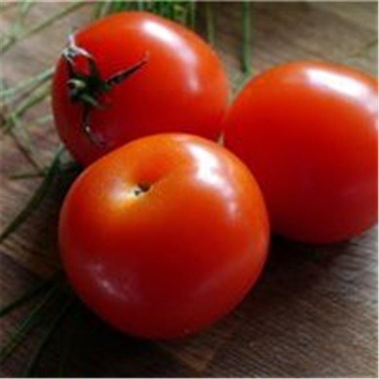 ir a Tomate