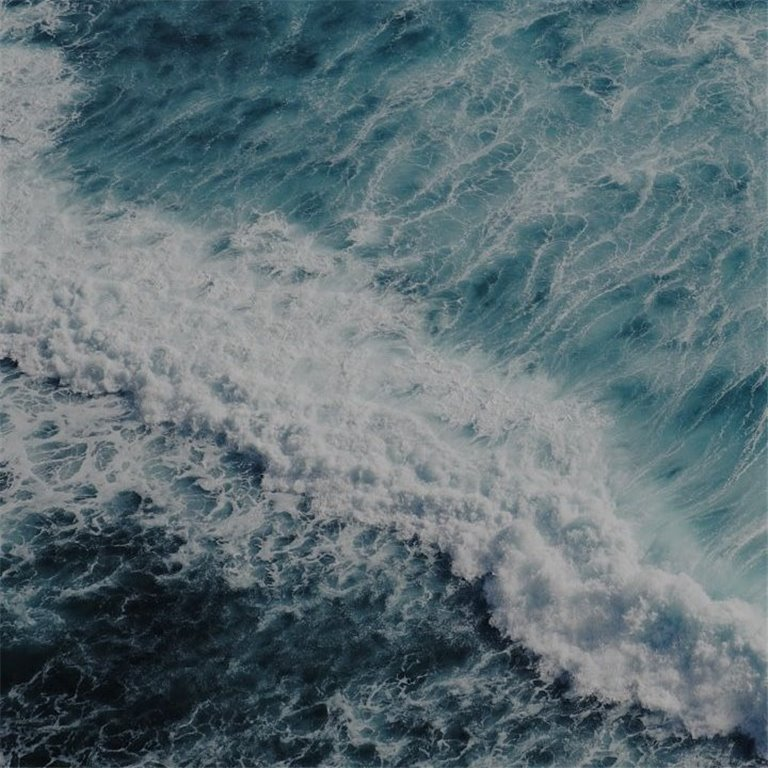 ir a Productos del mar