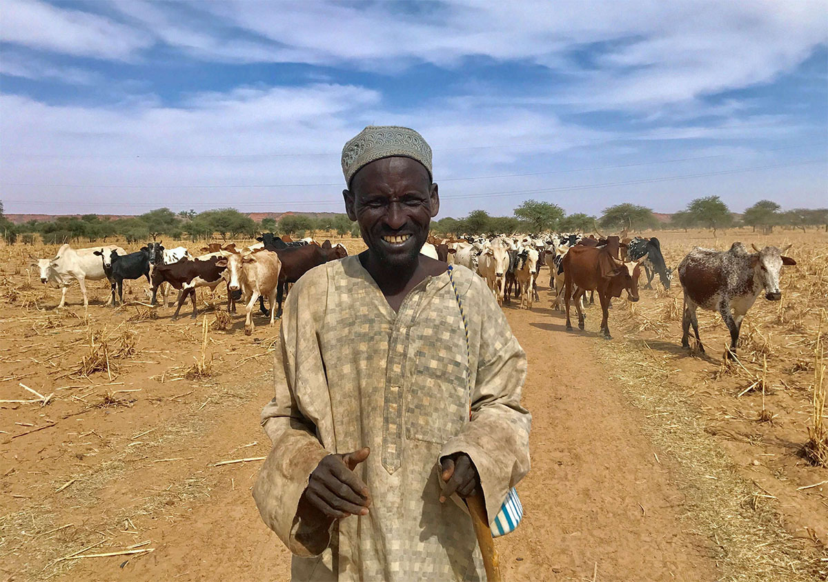 A Fulani cattle herder walks with his cows outside the city of Tillaberi