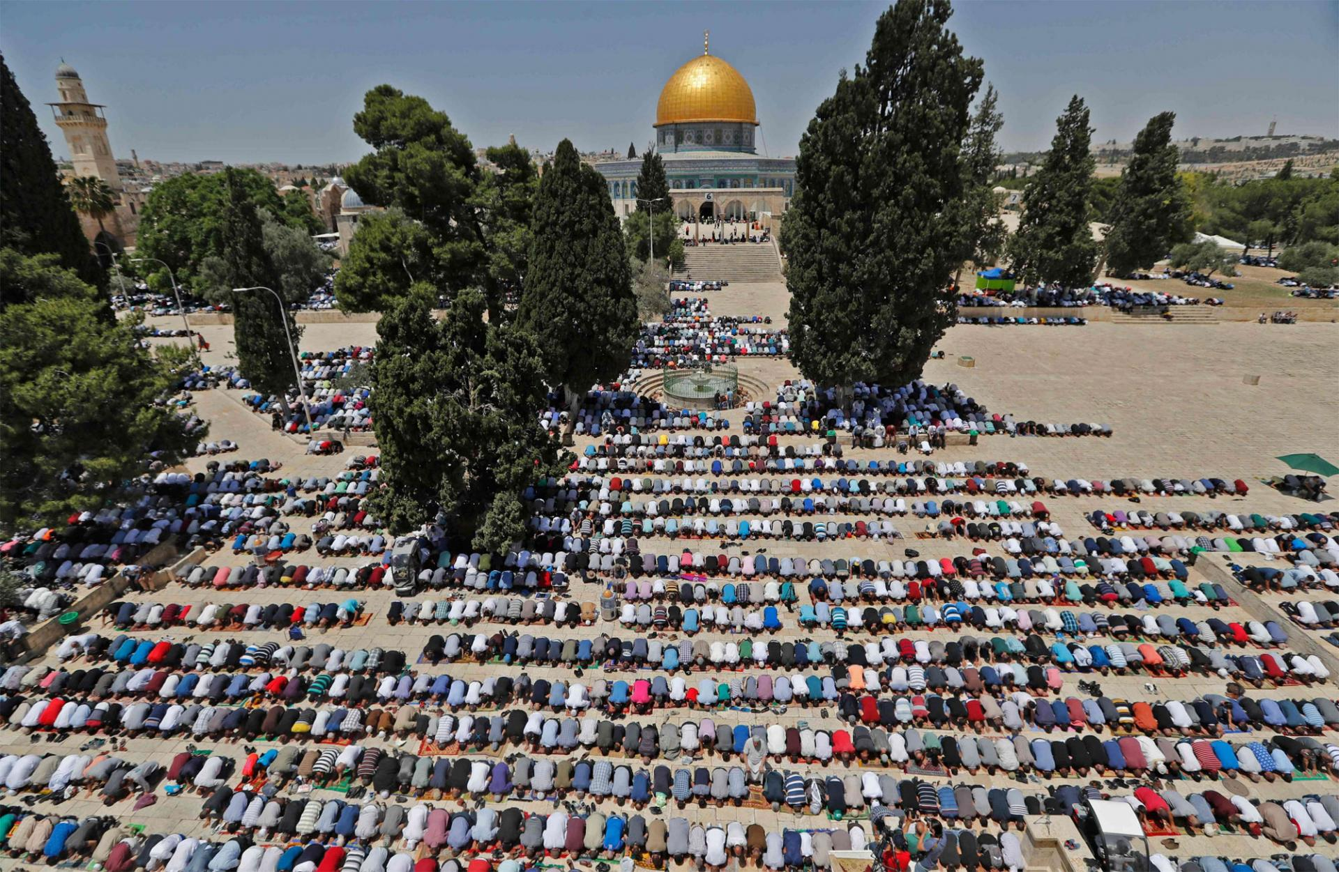Ramadan In Palestine - My Olive Roots