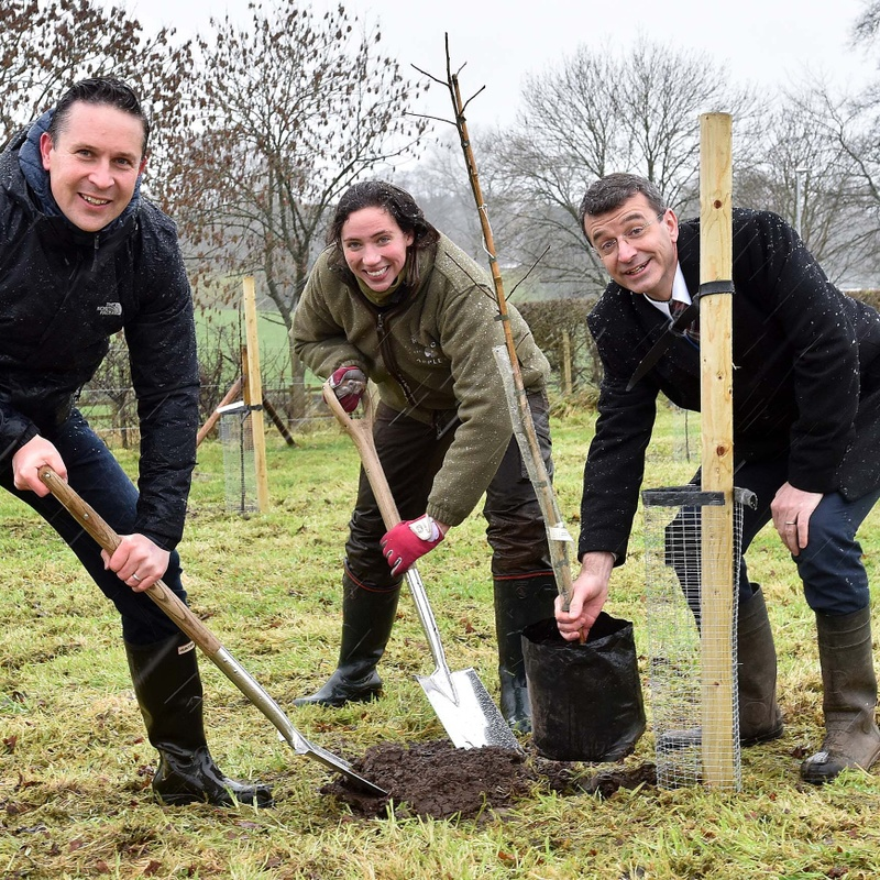 The King's School Establishes Heritage Orchard