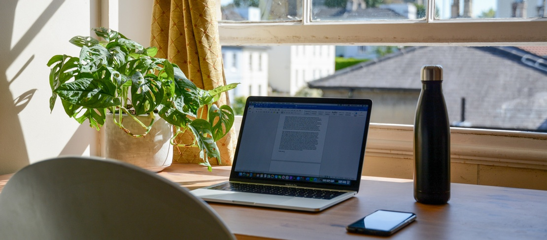 A dark water bottle, a laptop and a leafy pot plant are in the foreground on a brown wood desk. Out the window there are houses in the background