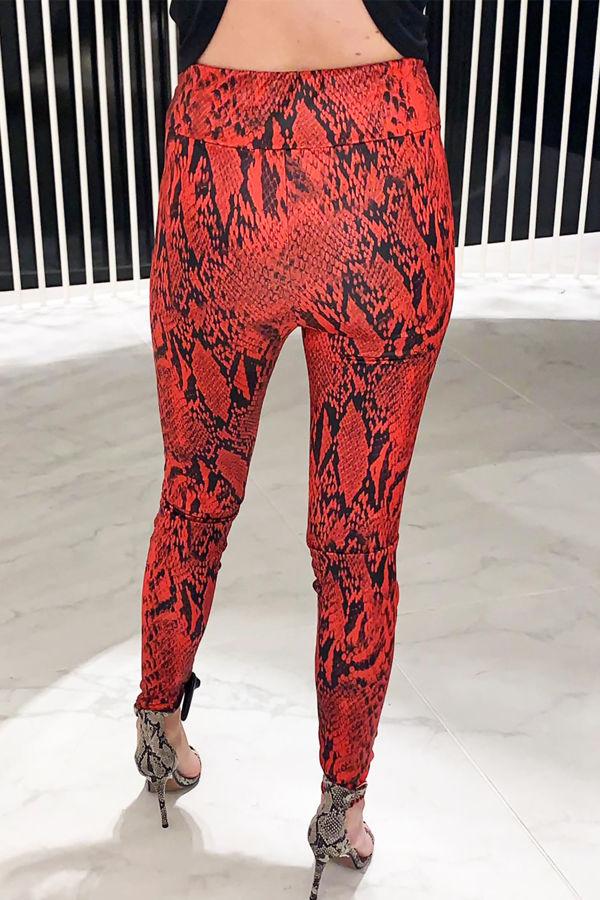 Snake Skin Pants - Red