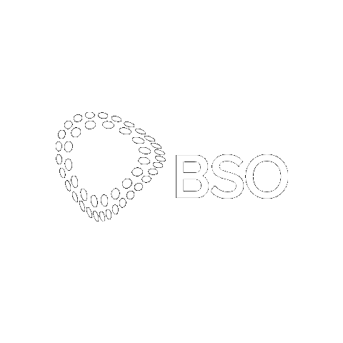 BSO logo in white